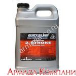Моторное масло Quicksilver Premium для 2-х тактных подвесных моторов (мин.) 10 л